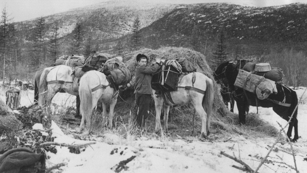 Конец сезона. 1958 год. Фото из архива Елены Афанасьевой-Демчук.