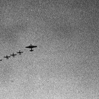 Самолеты на посадку, похоже, уходили по одному. Очевидно так было предписано инструкциями. На всех сразу ВПП явно не хватало... самолет-лидер садился последним...