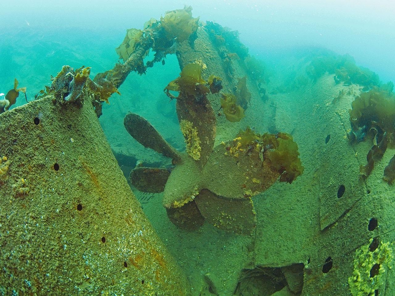 Затопленная подводная лодка 613-го проекта 171 ОБрПЛ.