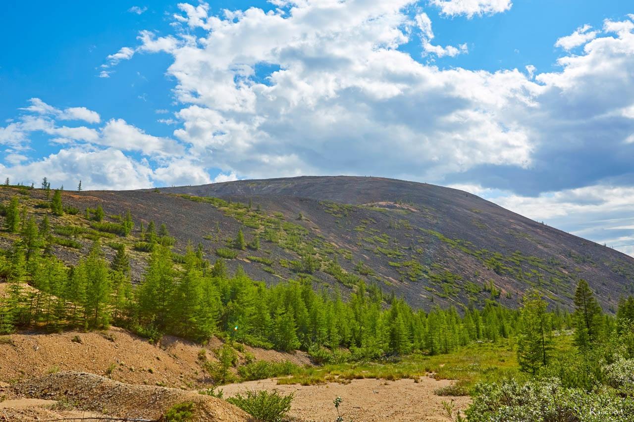 «Оловянная» гора, высота - 1114 метра над уровнем моря. Хета. Июль 2017 года.