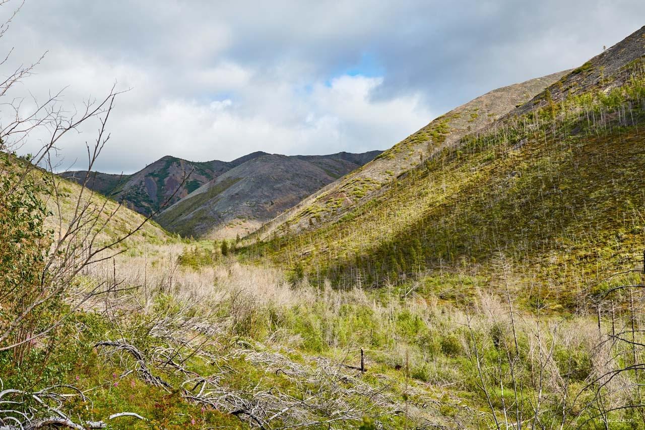 Распадок, где находились рудник и посёлок имени Лазо.