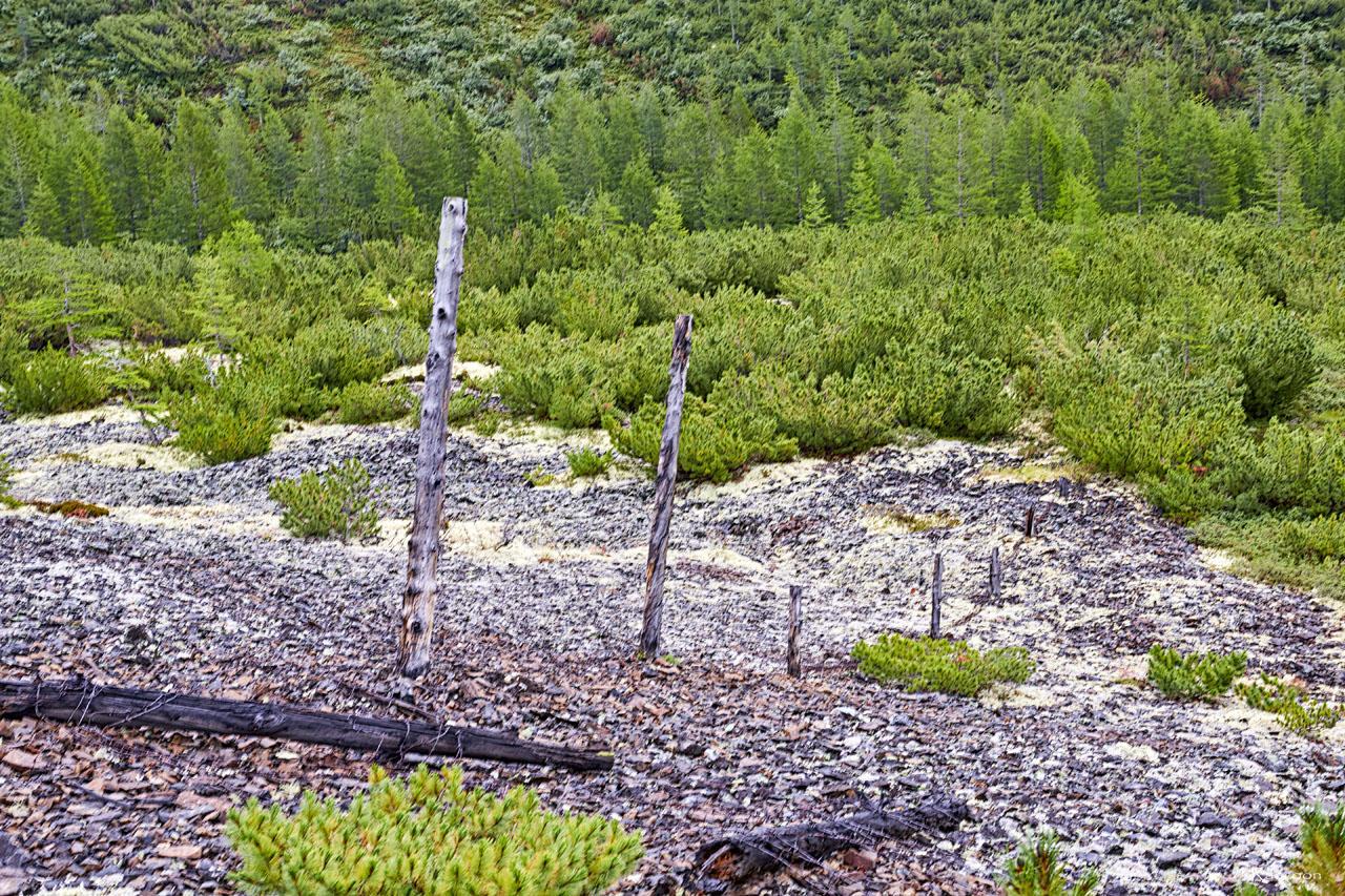 Остатки проволочного заграждения промзоны рудника Сталинградец.