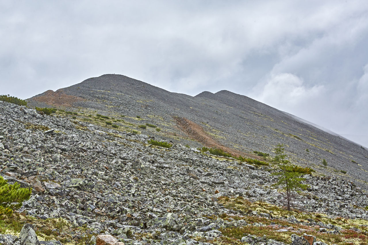 Разведочные траншеи на склоне сопки. Рудник «Сталинградец».