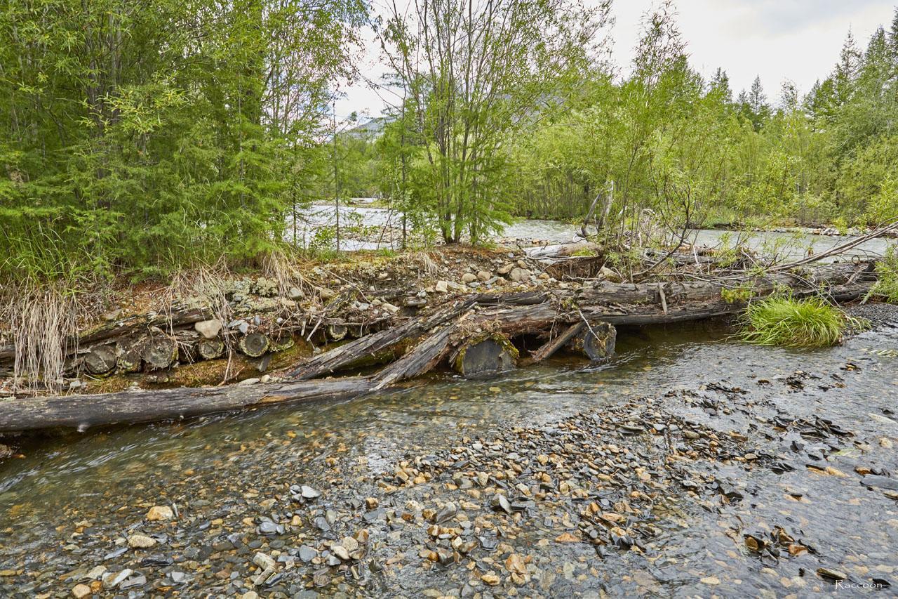 Остатки моста через реку Тэнкели.