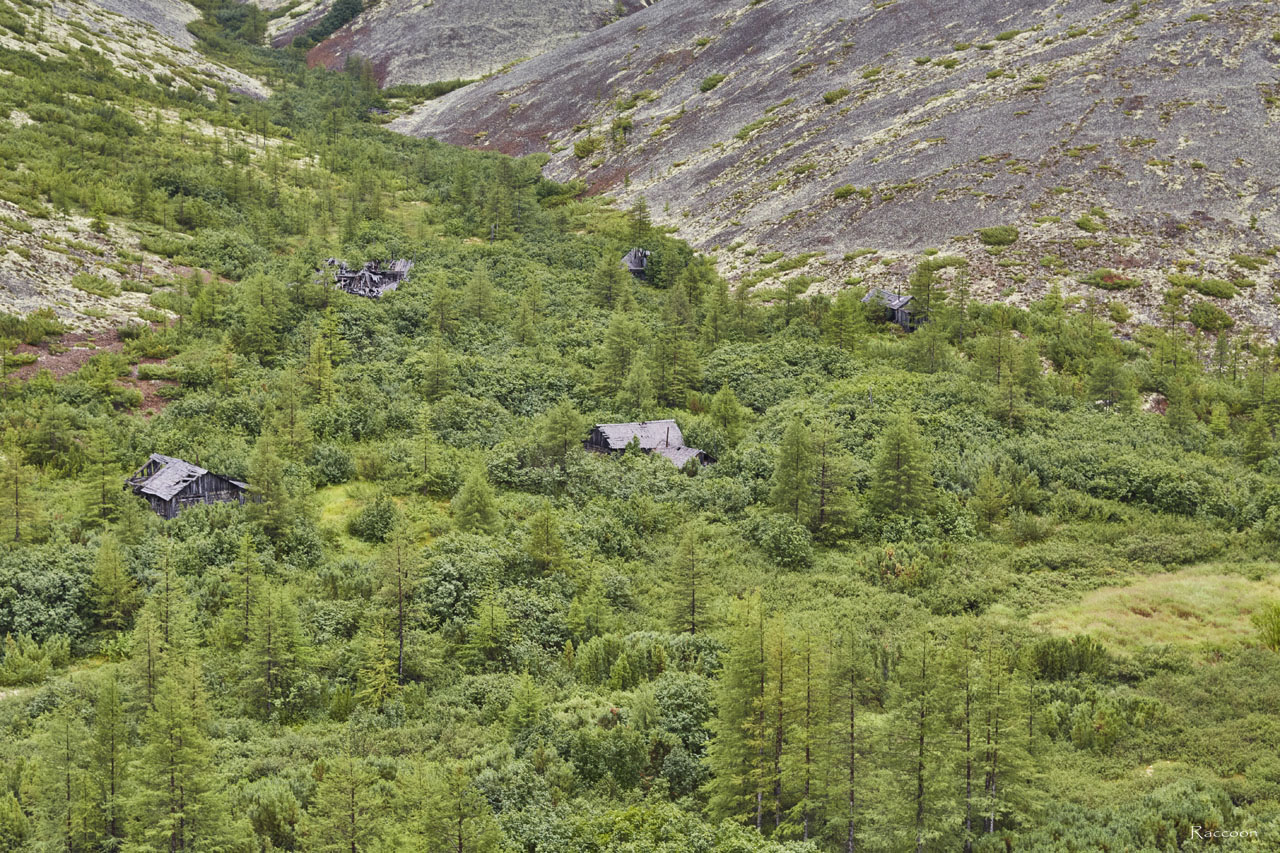 Дома вольных и охраны выше по распадку у ОЛП № 15 «Урчанский» в долине ручья Эдванс.