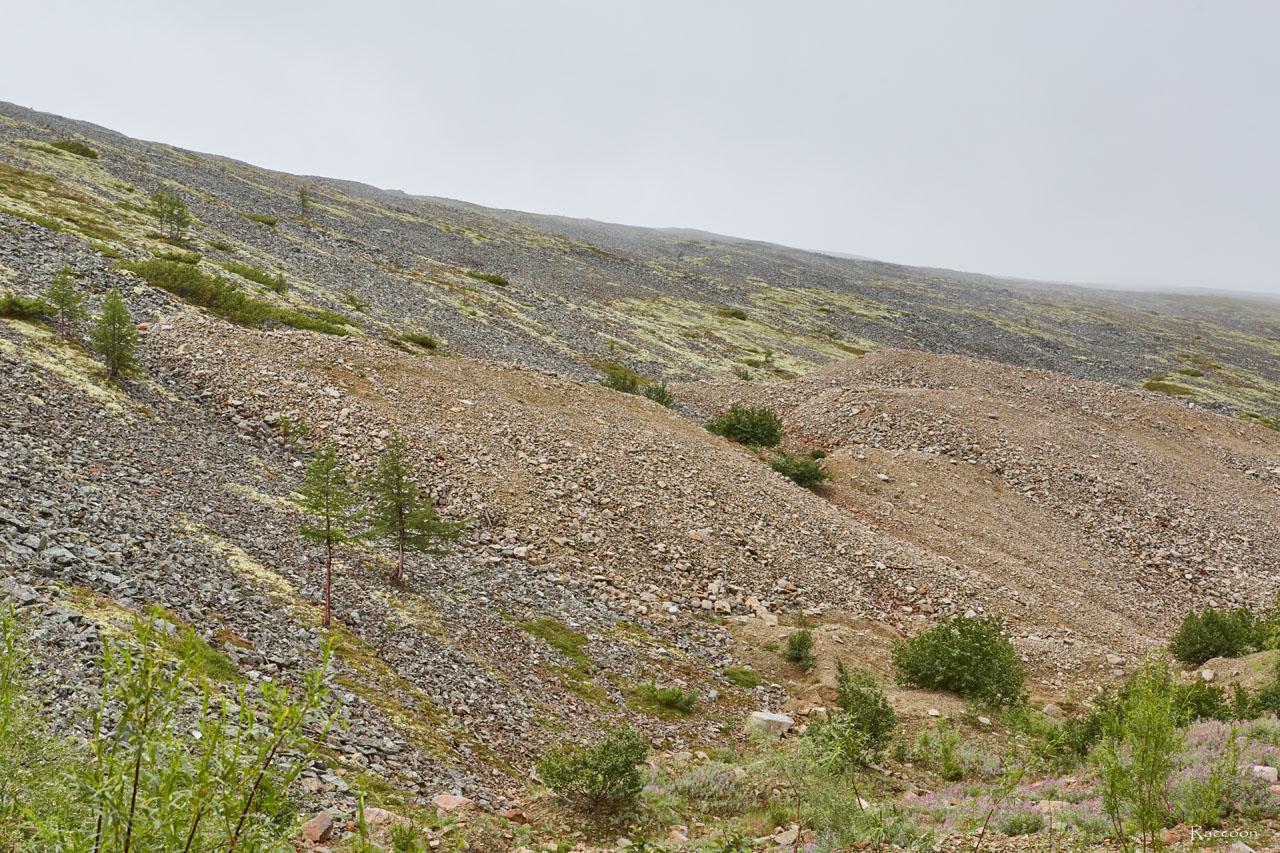 Отвалы на одной из сопок. Горный участок «Эдванс». Рудник Урчан.