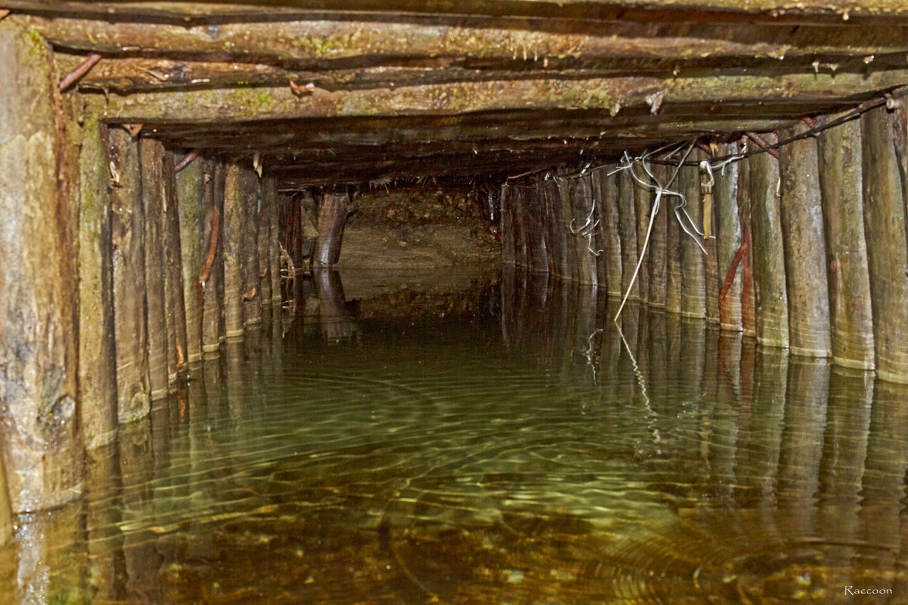 Штольня шахты у истоков ручья Бедный. По стене шахтной крепи шла электропроводка.