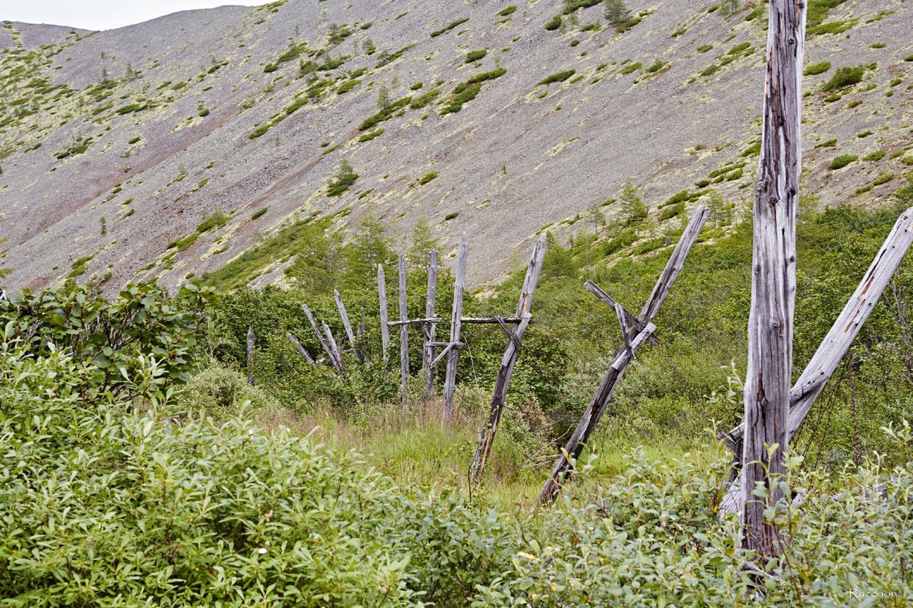 Ограждение из колючей проволоки по периметру лагеря.