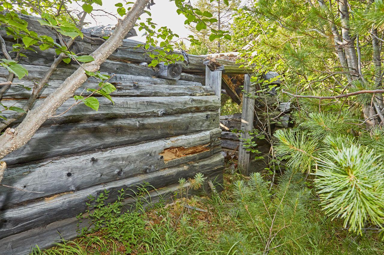 Дом на берегу ручья Бедного.