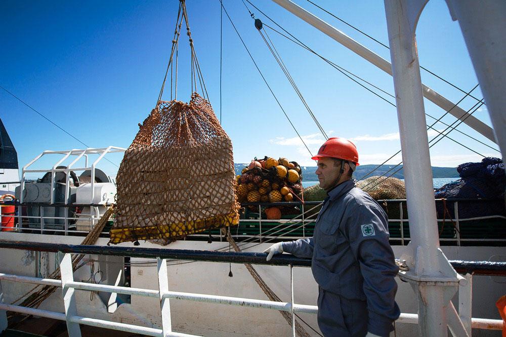 Выгрузка готовой продукции рыбаков.