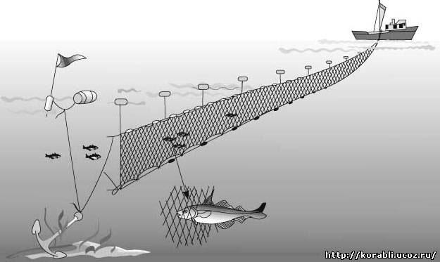 Схема лова дрифтерными сетями