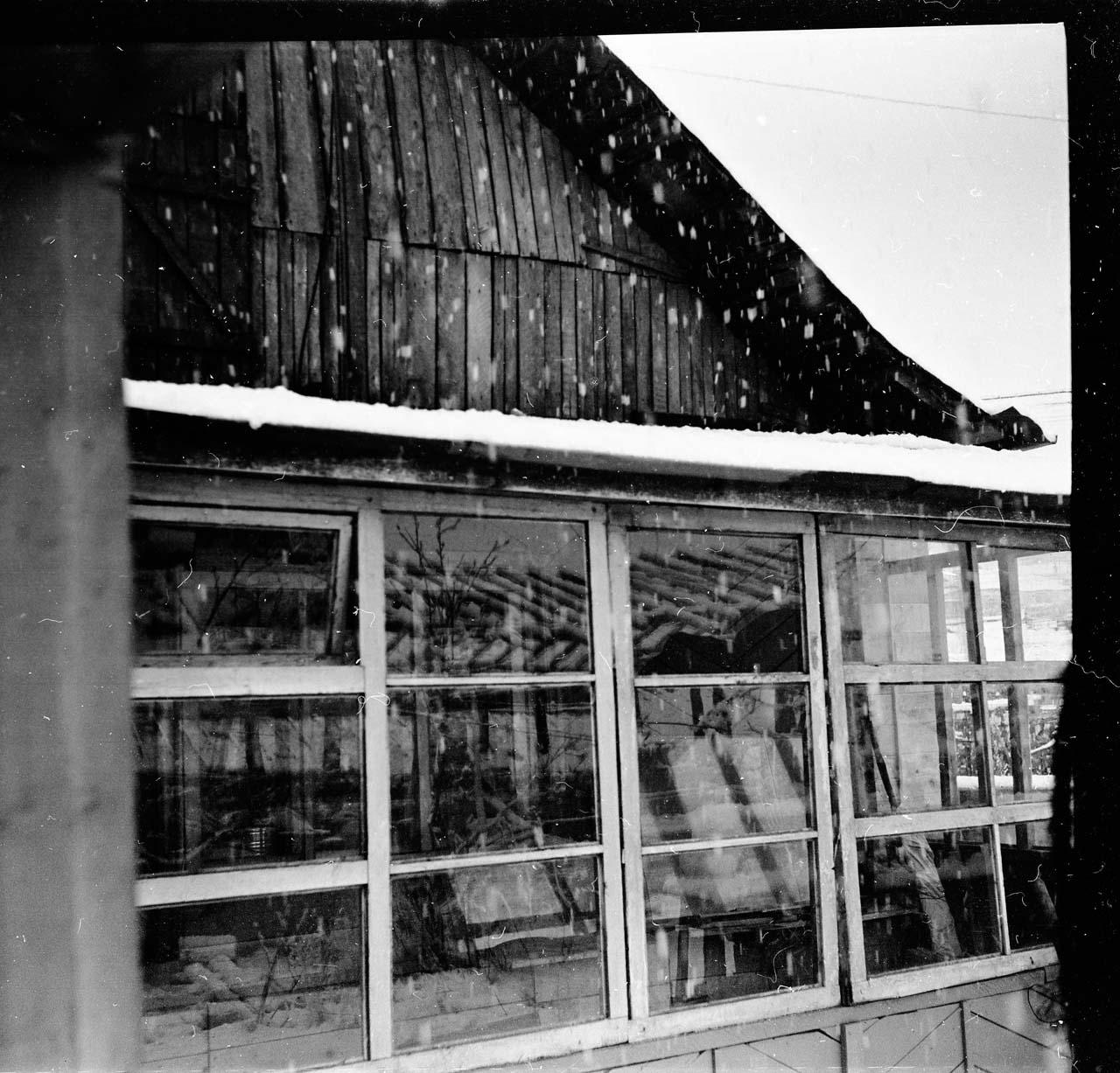 Снег в июне. Посёлок имени Гастелло.