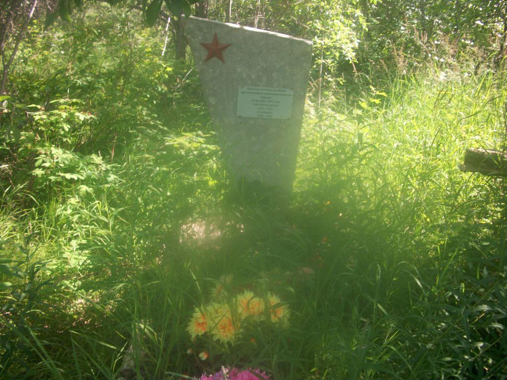 Памятник на могиле Н.А. Шведов и А.Д. Новгородского.