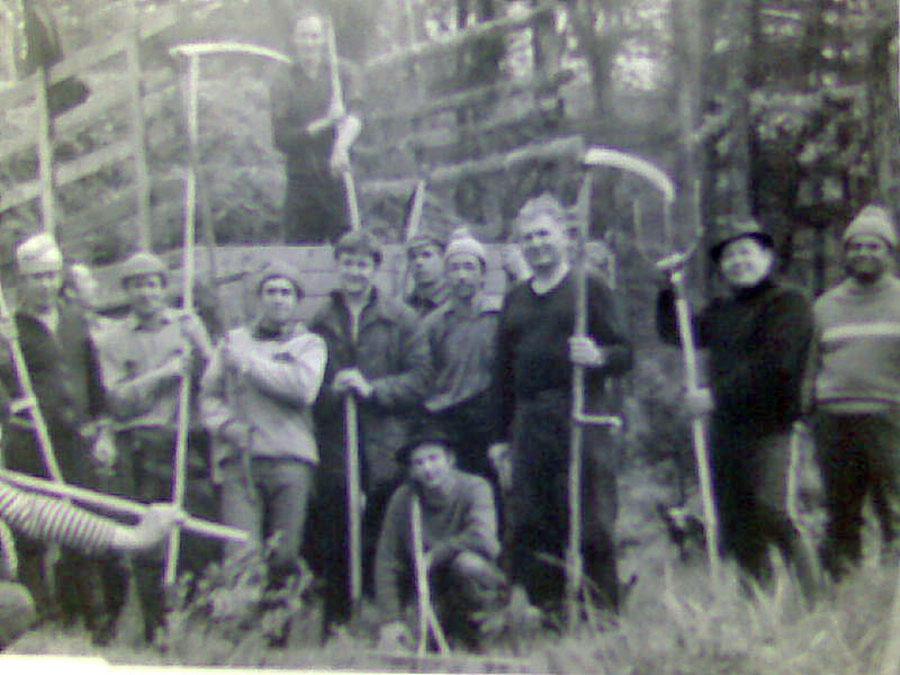 Арарат. Работники ЛТП-1 на сенокосе.
