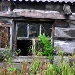 Поселок Новая Армань. 2014 год