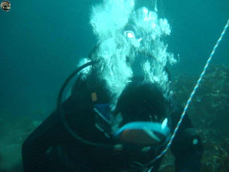 Водолаз под водой.