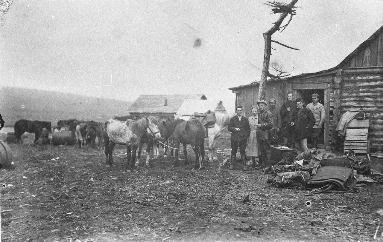Лошади - основная тягловая сила на Колыме в начале 30-х годов.