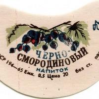 smorod_1
