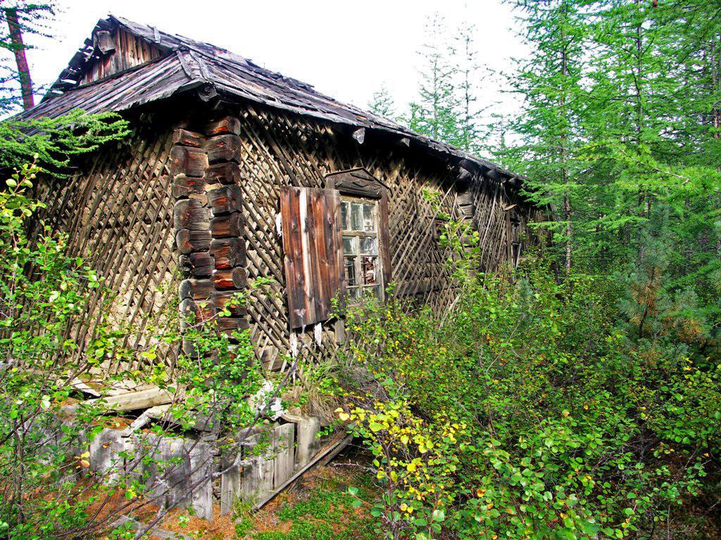 Вот такие дома в глухой и непроходимой тайге строили в посёлке Карбюляхский. Из архива Андрея Лисицкого.
