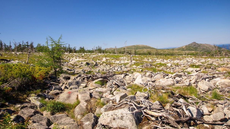 Каменное плато.