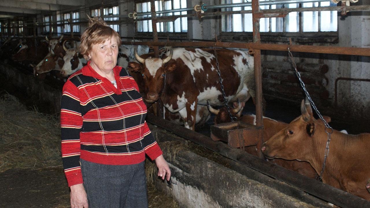 Наталья Андреевна Николаева на ферме.