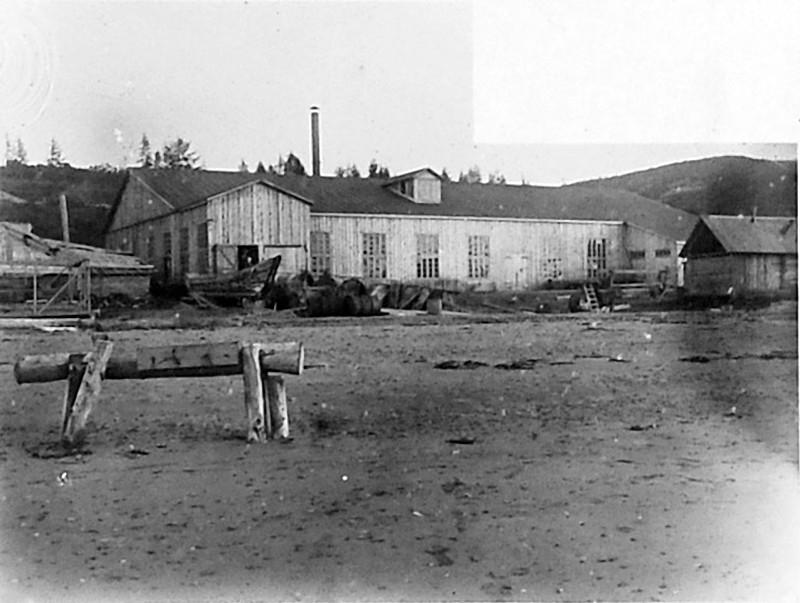 «Дельфиний завод». Общий вид завода по переработке белухи. 1932 год.