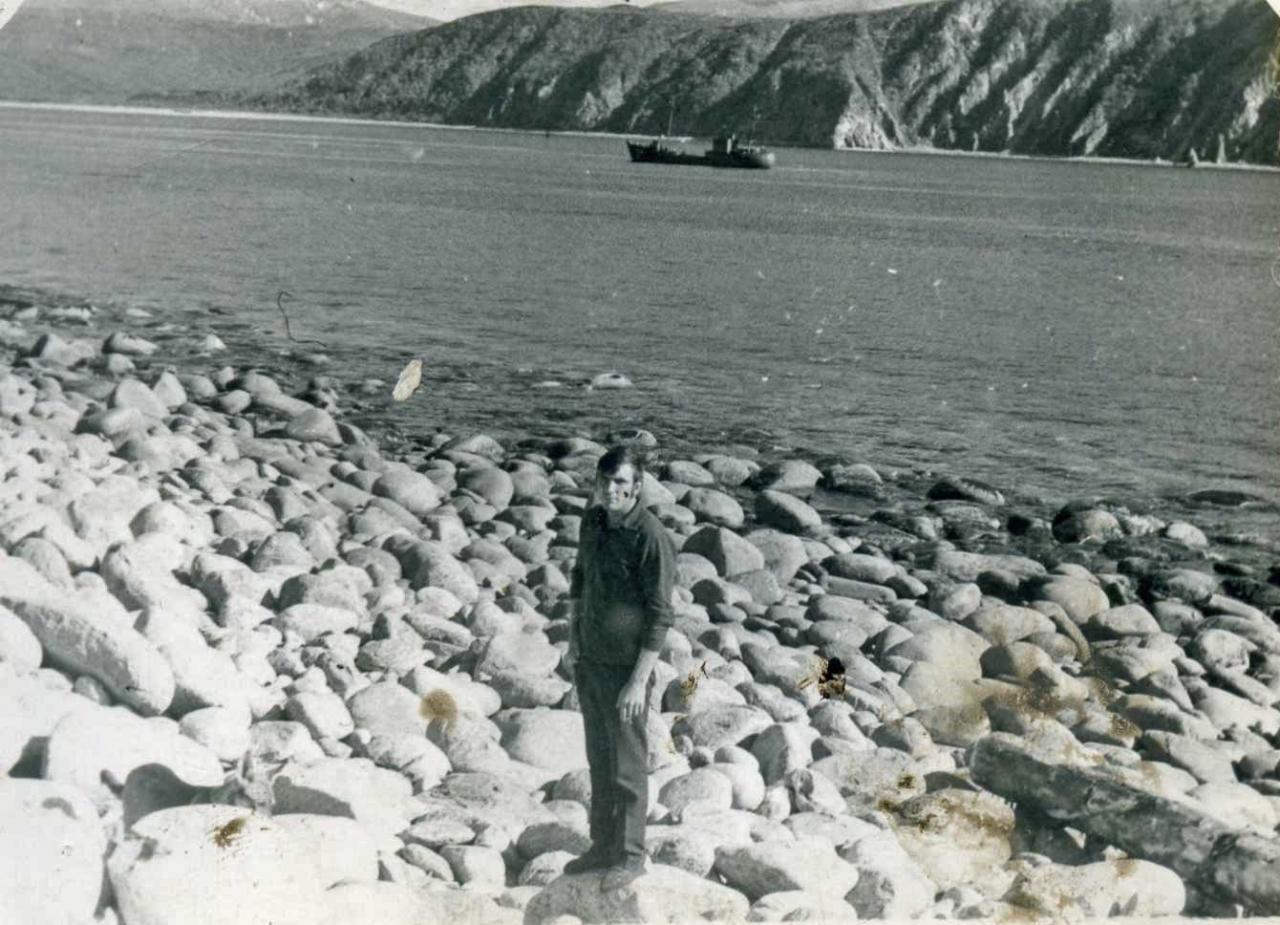 Берег острова, вдали материковые скалы.
