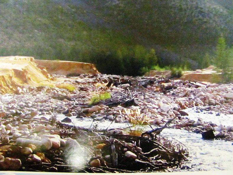Размытые радиоактивные отходы... 2009 год.