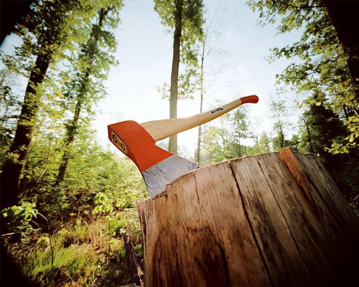 Лес рубят - щепки летят...