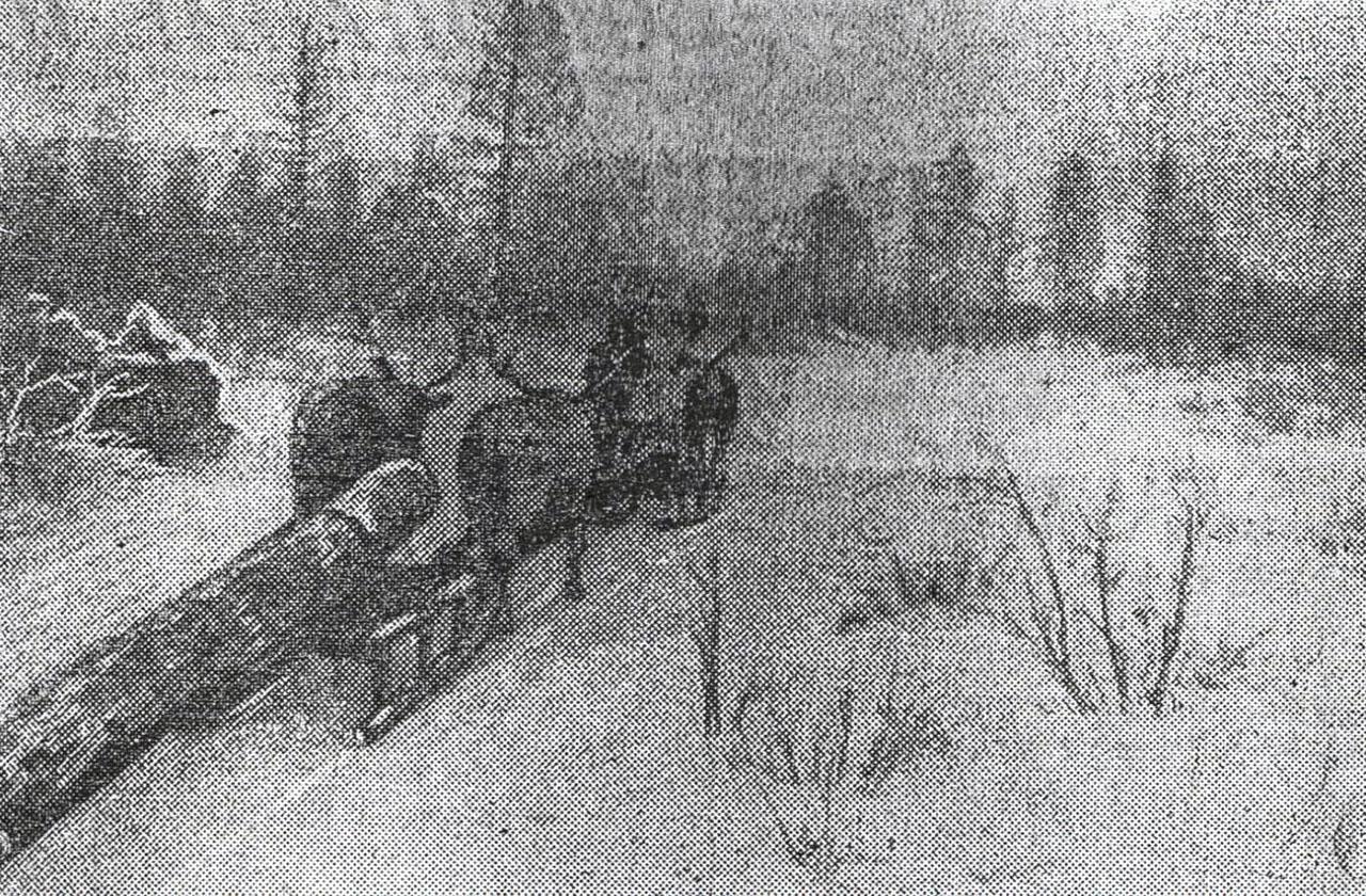 Транспортировка строительного леса оленями. Зима 1941 года.
