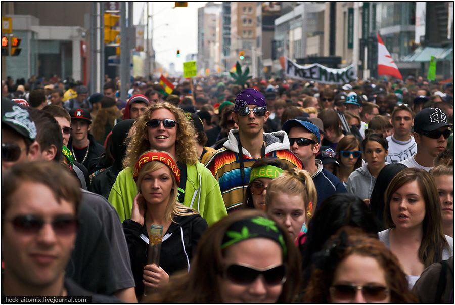 Конопляный марш в Торонто.