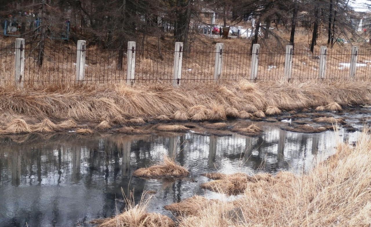 Черное озеро у кладбищенской ограды.