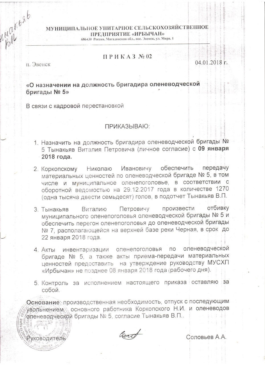 oseneva_oleni_003