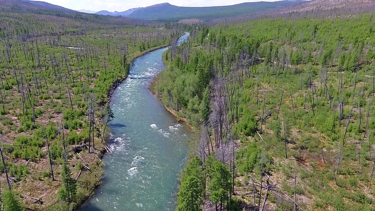 Река Талая. Фото из архива Елены Полищук. 2018 год.