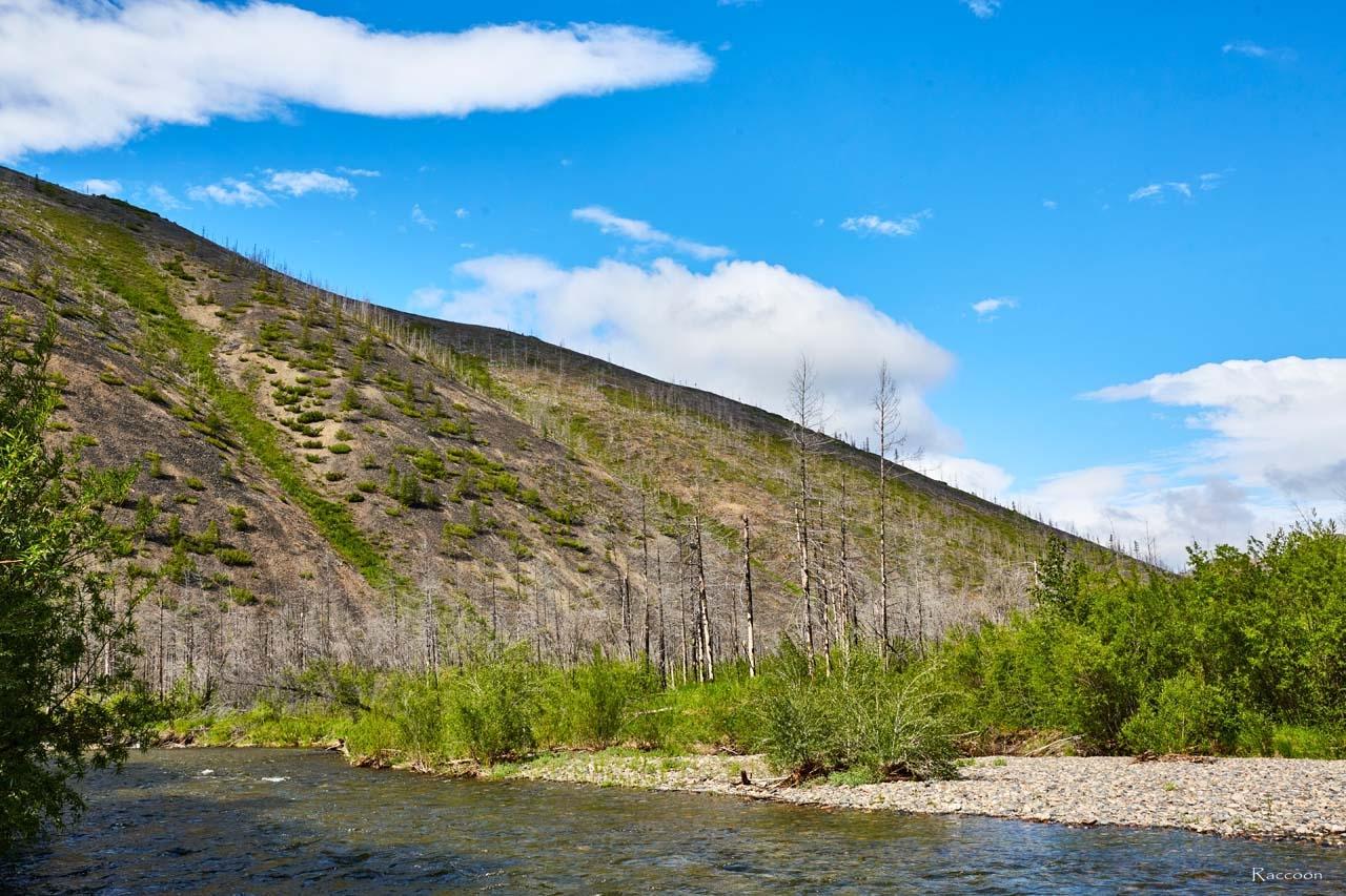 Разлившаяся река Дюрясь-Юряге.