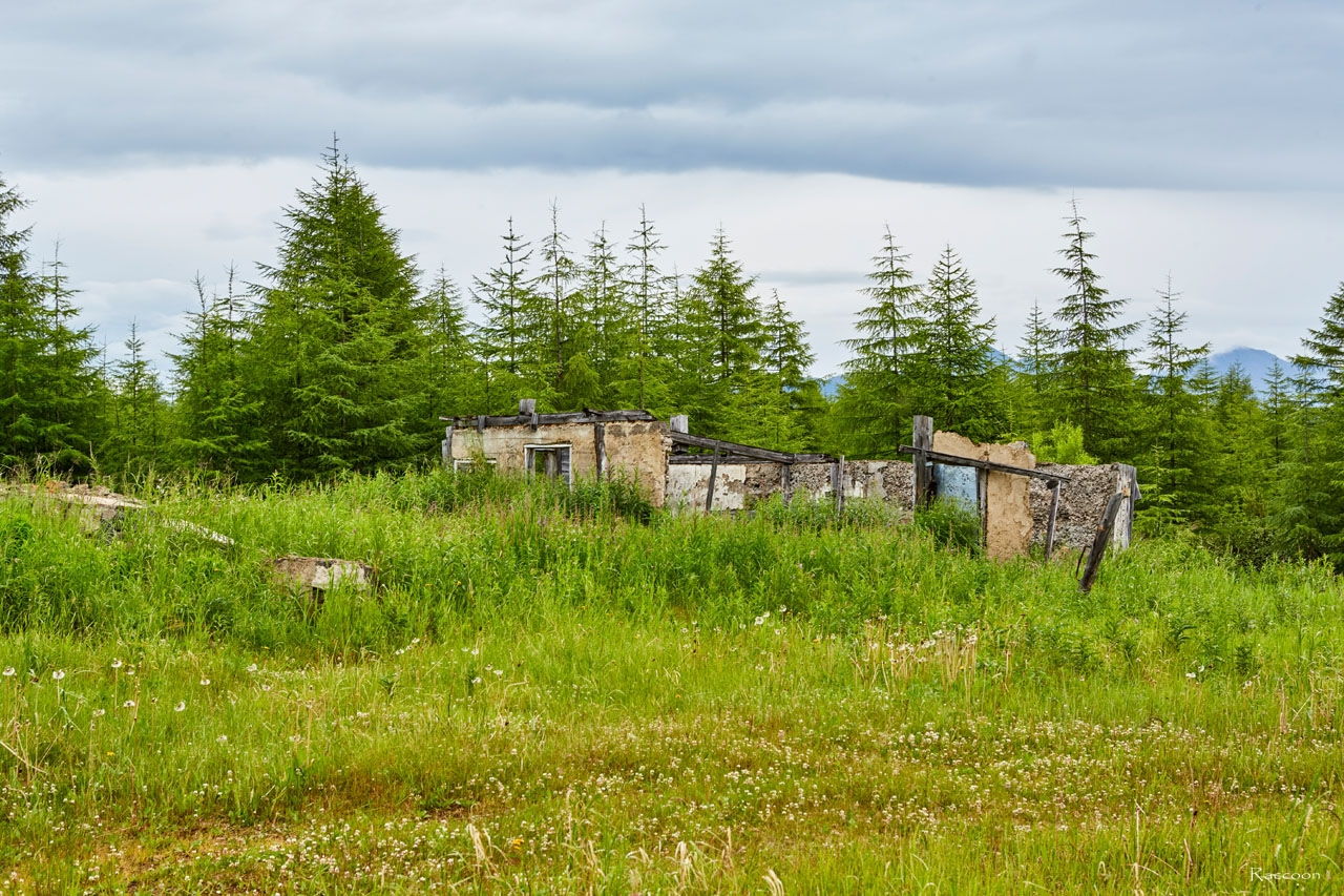 Развалины строений на пересечении участка старой трассы с узкоколейной железной дорогой Магадан-Палатка в районе посёлка Уптар. 2017 год.