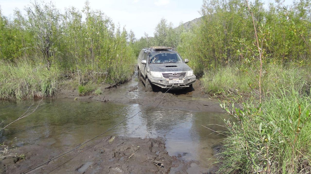 Ручей после болотины. Из архива Елены Полищук.