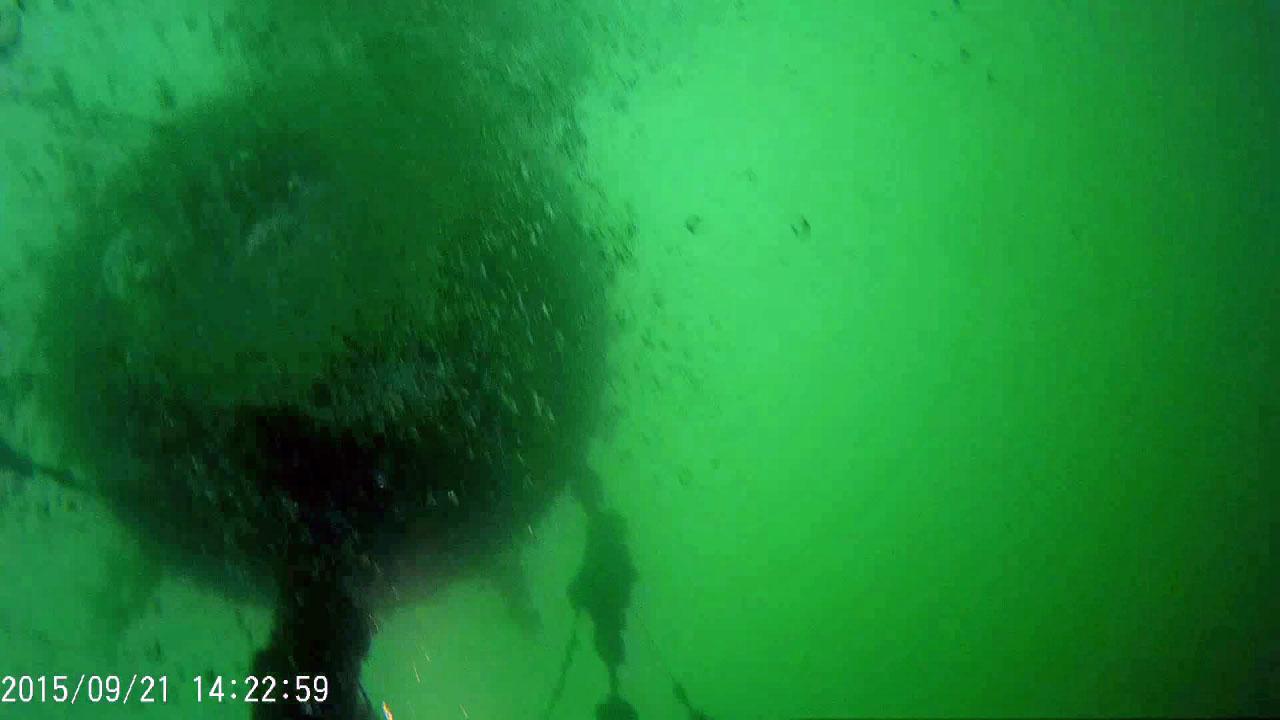 C-288. Буй прицеплен к корме лодки цепями. ПЛ 613 проекта, затоплена у отсыпки. Фото предоставлено Алексеем Гавриловым.