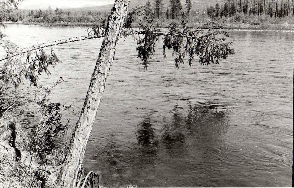 Река Интрикан.