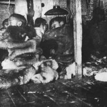 Чукотский район, с. Лорино, начальная школа, 1935 г.