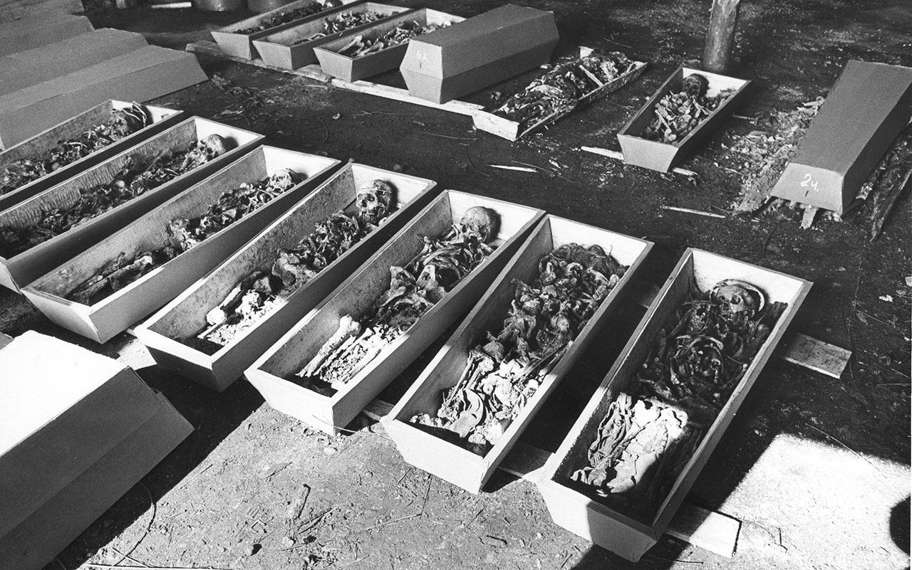 Останки японских военнопленных. 1991 год.