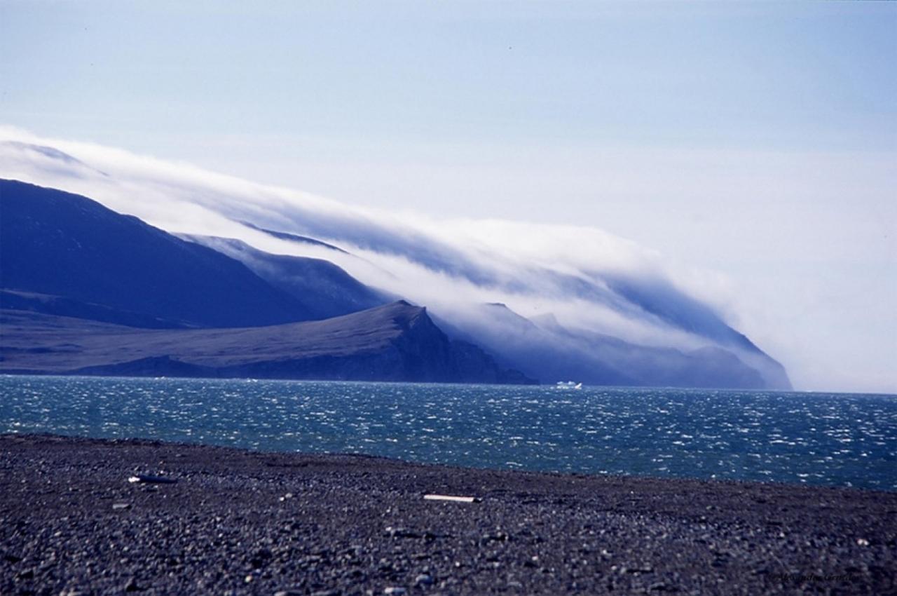 Остров Врангеля.