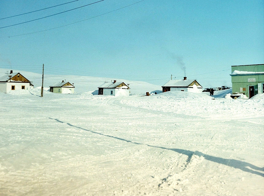 Остров Врангеля. Посёлок Ушаковское.