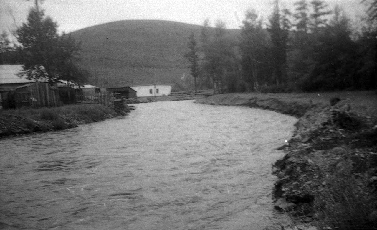 Река Ягоднинка.