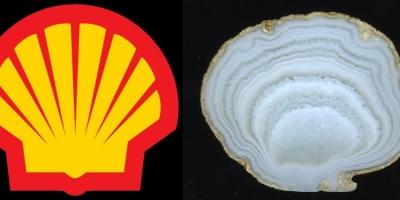 Shell. Агат, Лебединое (Ольское плато).