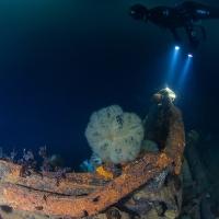 Подледное погружение фридайвера Алексея Гнездилова на затонувший пароход «Выборг». Фото Андрея Сидорова.